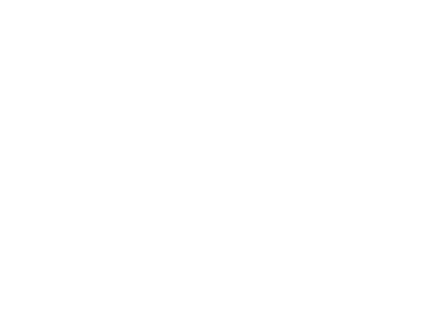 Western Pacific Insurance