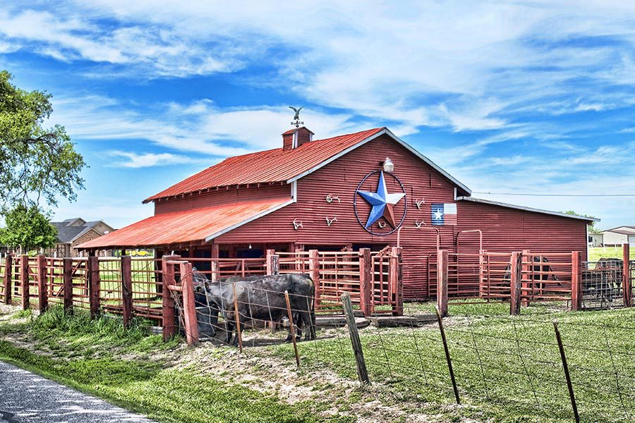 About Our Agency - Red Barn With Black Cows in the Paddock, a Red White and Blue Star on the Side of the Barn