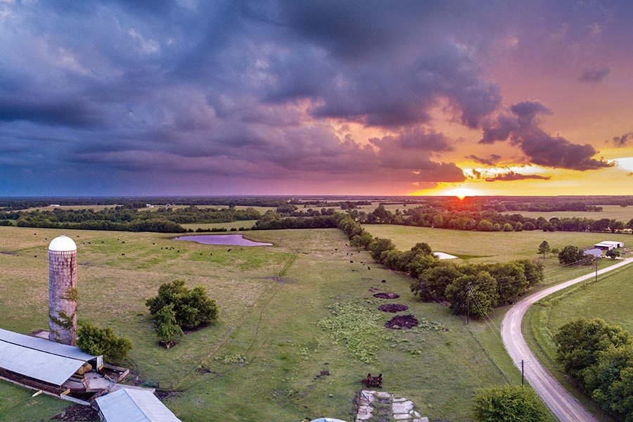 Fairfield, TX Insurance - Aerial View of a Dairy Farm at Sunset, Green Pastures and Trees Stretching Into the Distance