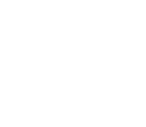 Insurance Solutions Incorporated