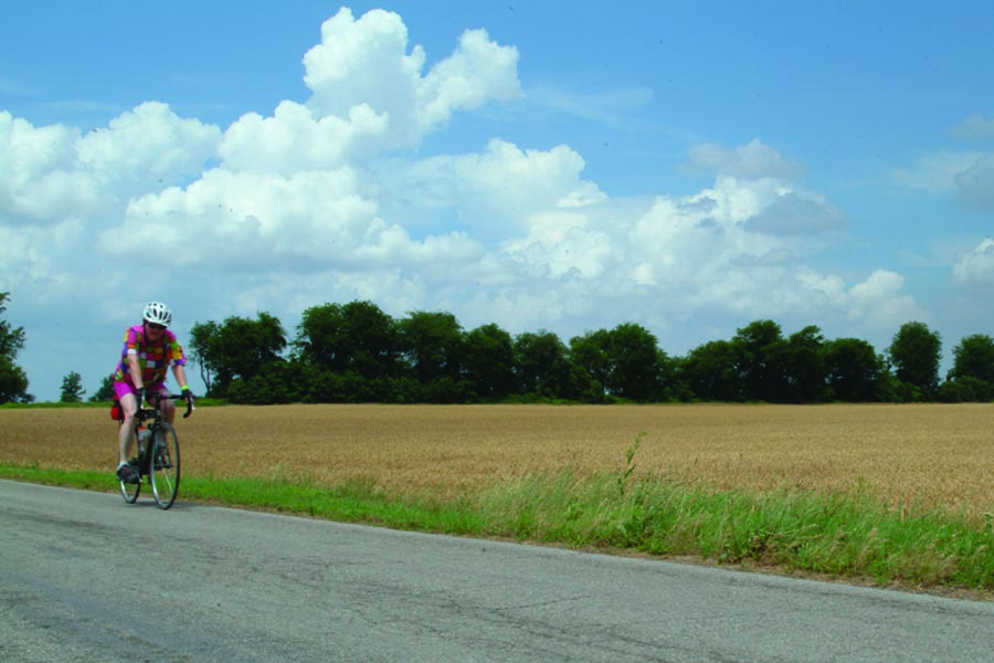 About Our Agency - Biker in Bright Clothing and Helmet Rides Past a Golden Field on a Sunny Day, White Fluffy Clouds Overhead and Trees at the Edge of the Field