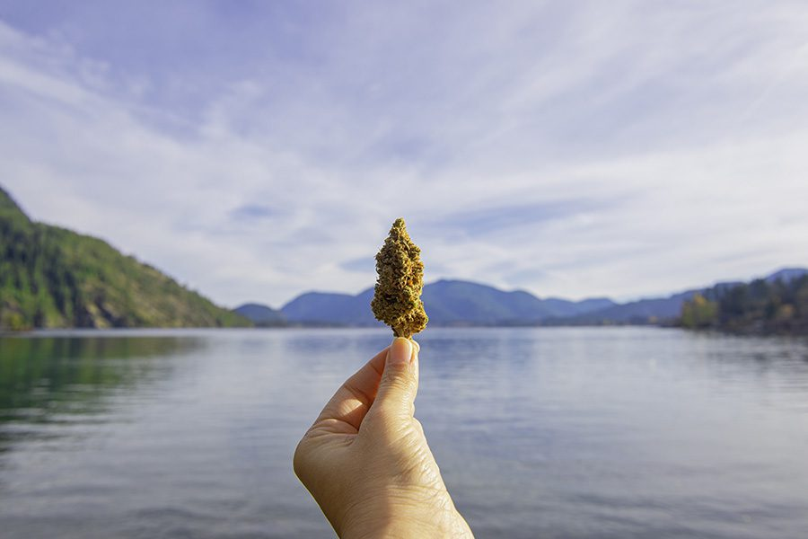 Cannabis Newsletter - Man Holding a Cannabis Bud in Front of the Lake with Views of the Mountains in the Background