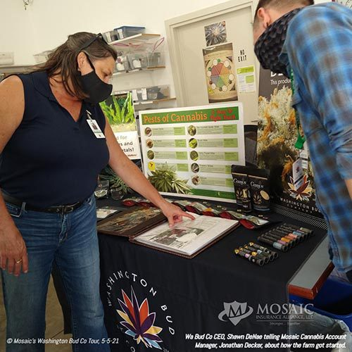 Blog - Display Table with the Description of How the Cannabis Farm Started at WA Bud Co
