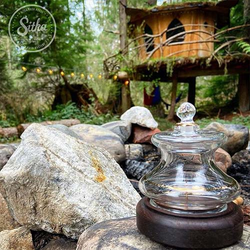 Cannabis Blog - Sitka Gold Cannabis Dome Outside in a Beautiful Garden