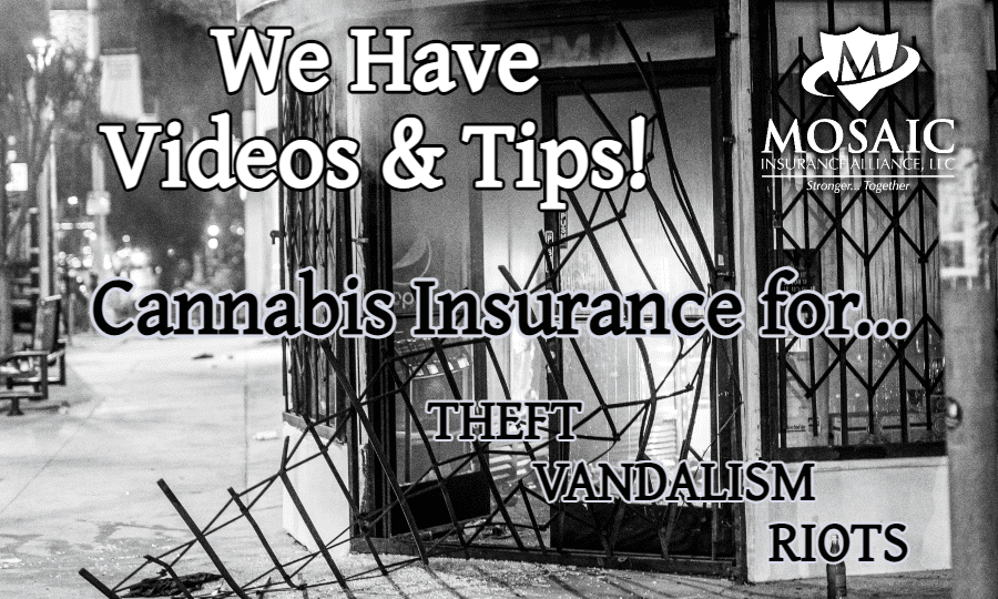 Blog Image - What Cannabis Insurance Can Protect Your Business from Rioters, Theft, and Vandalism - Business Broken Into With Smoke Coming Out Of The Front Door
