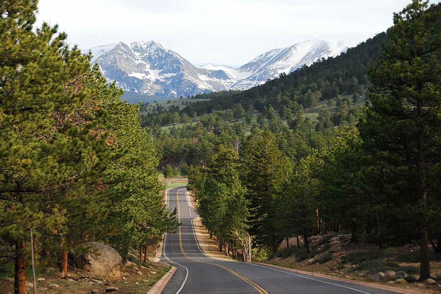 Contact - View of Empty Winding Road Leading Up to the Mountains with Surrounding Forests in Colorado