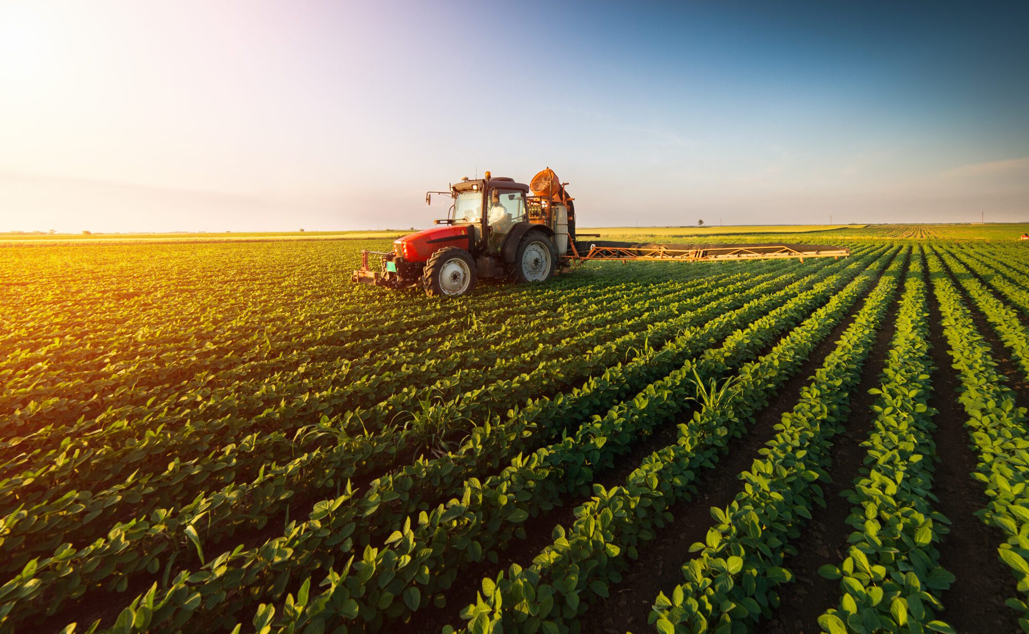 Agribusiness Insurance: Covering Farming's Unique Insurance Needs