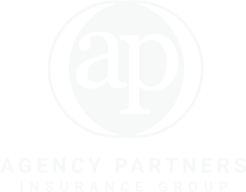 Agency Partners Insurance Group