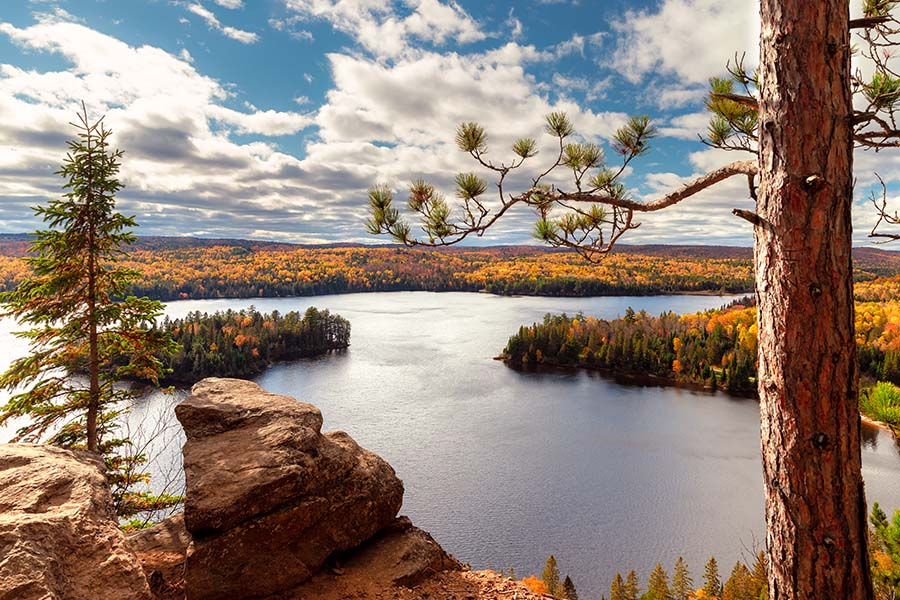 Blog - Landscape View of River and Fall Foliage in Ontario