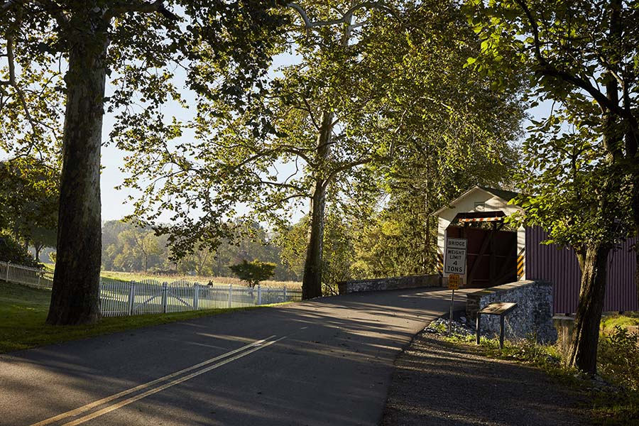 About Our Agency - View of an Empty Road Leading to a Covered Bridge Surrounded by Green Trees in Lancaster Pennsylvania