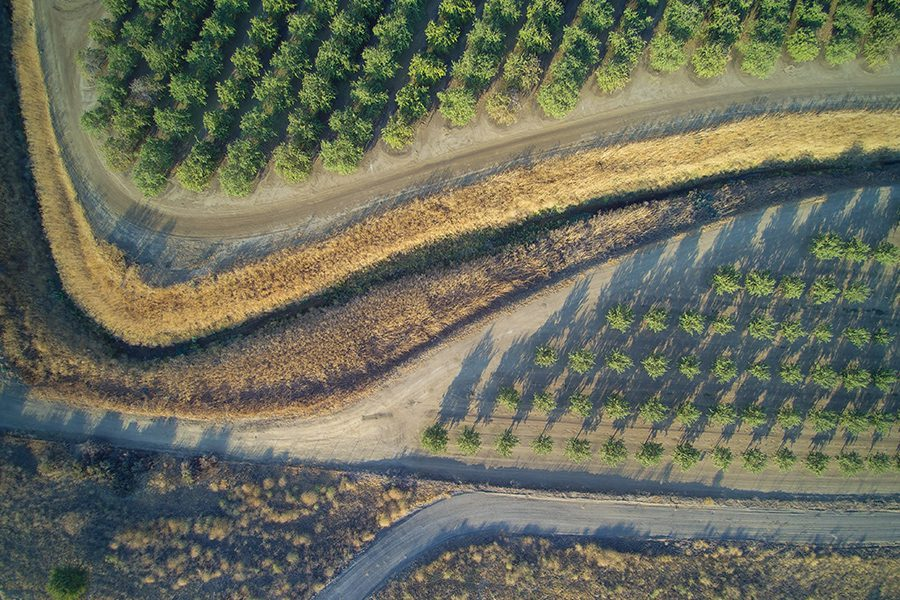 Contact - Aerial View of Almond Orchard Crops in California