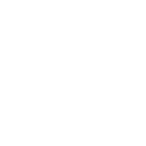 Walker Insurance Services Compass - 500 White
