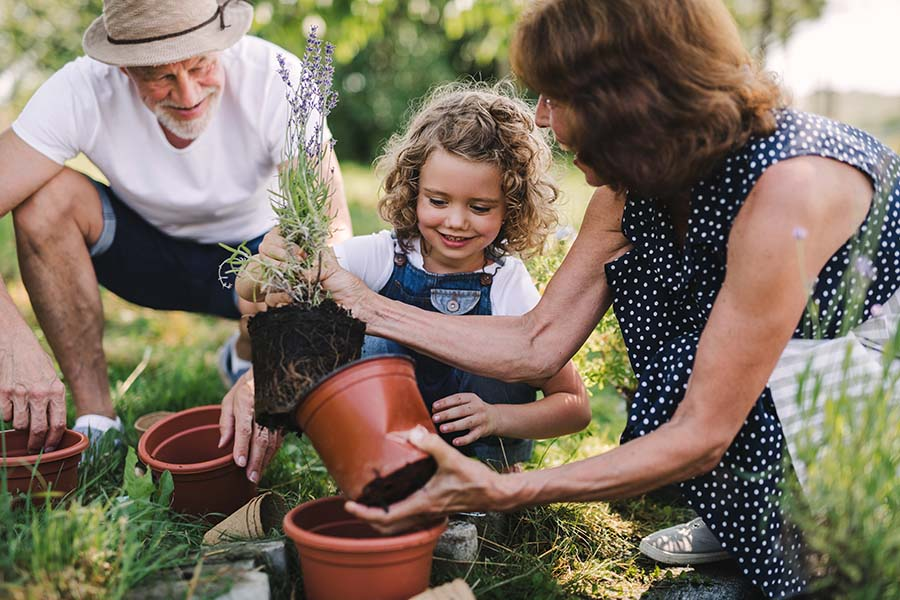 Insurance Quote - Grandparents Having Fun Planting New Flowers with Their Granddaughter in the Garden