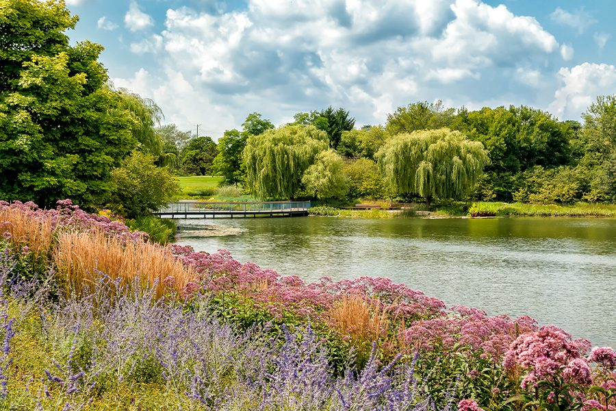 About Our Agency - Summer Landscape of Chicago Botanic Garden in Illinois