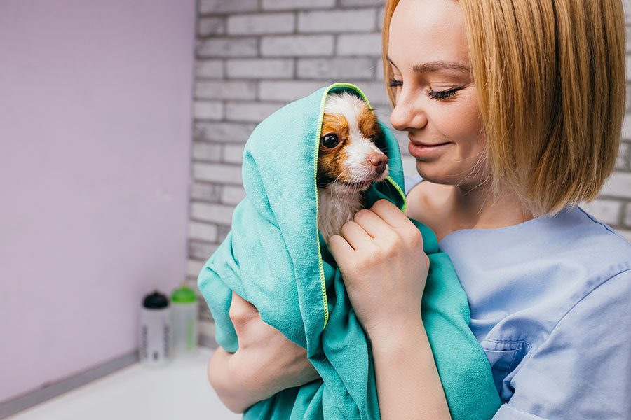Client Center - Smiling Dog Groomer Holding Wet Puppy Wrapped in a Towel