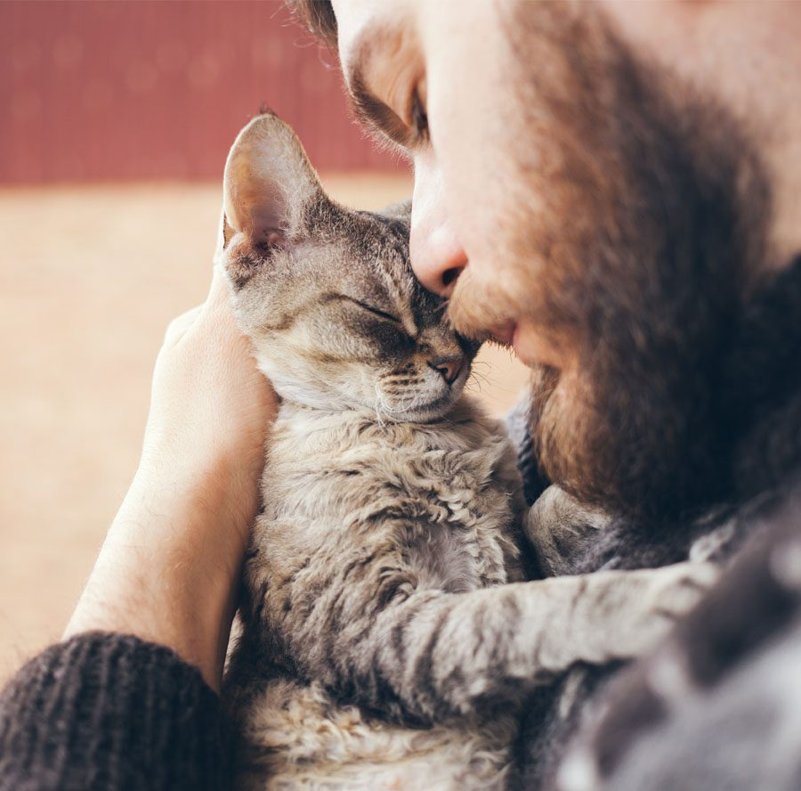 Homepage - Man Cuddling with His Cat at Home