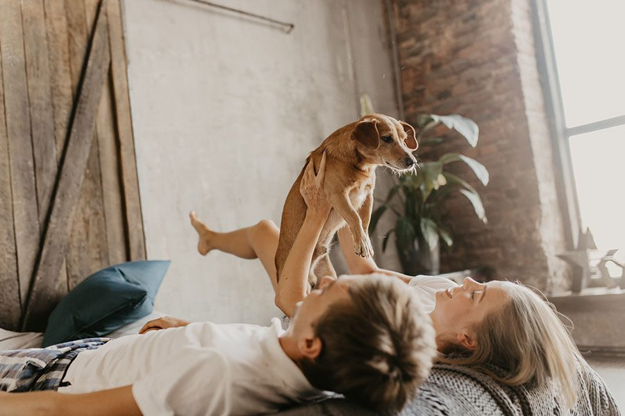 Personal Insurance - Young Couple Laying on the Bed Playing with Their Dog