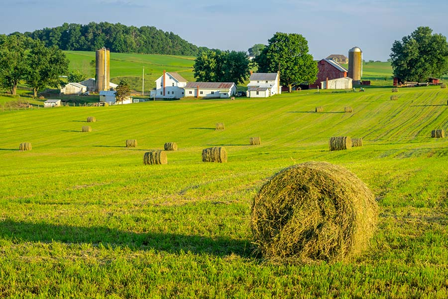 Jackson OH - View of Green Farm Field with Hay Bales and Farm Buildings in the Background in Jackson Ohio