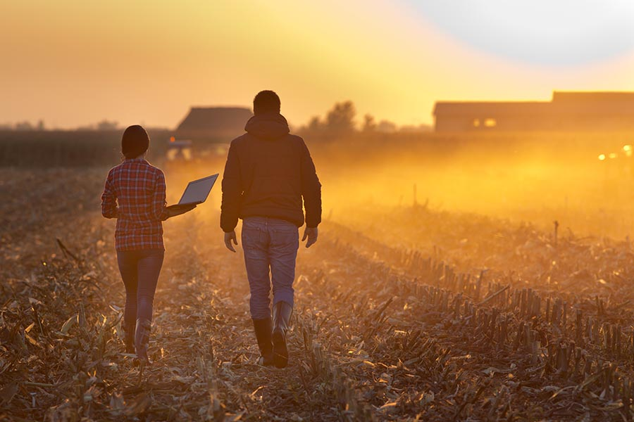 Specialized Business Insurance - Two Farmers Walk Through a Field at Sunset Holding a Laptop, Farm Equipment Running in the Distance, Dust in the Air