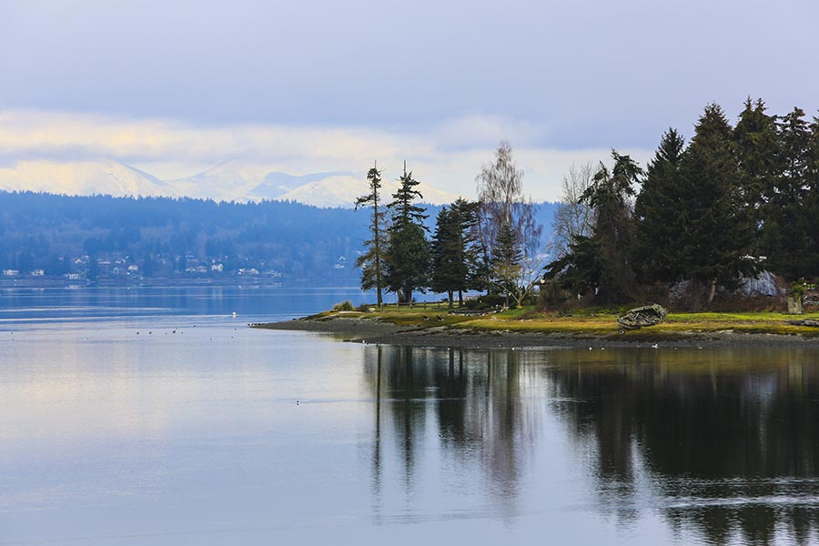 Silverdale, WA Insurance - Dyes Inlet on an Overcast Day, Pine Trees Lining the Shore, Mountain Range in the Distance