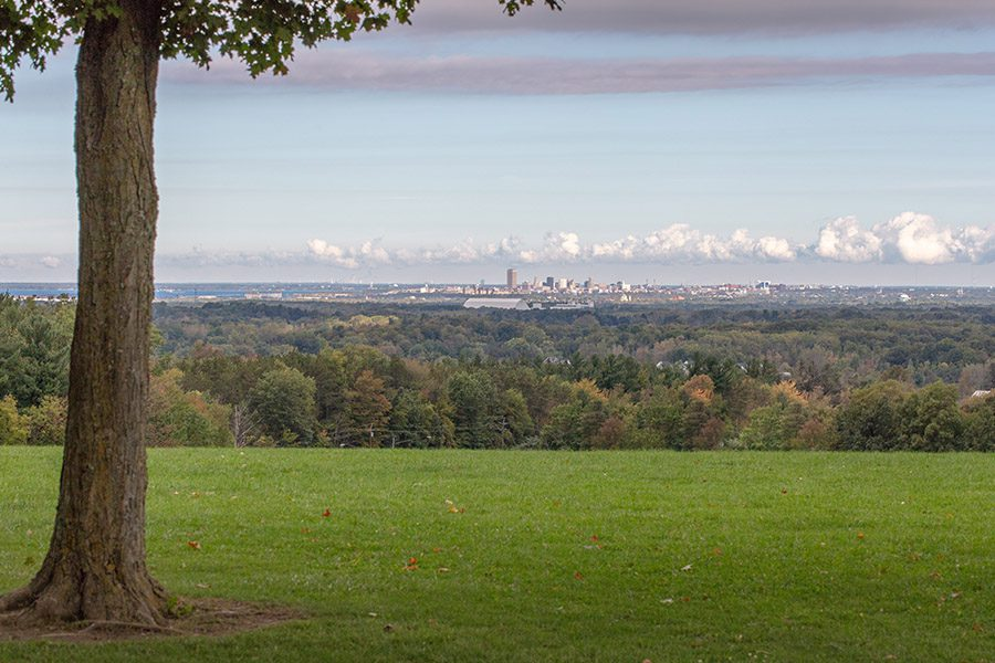 About Our Agency - Landscape View of Buffalo New York From a Distance