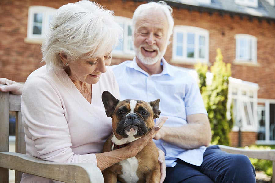 Blog - Senior Couple Shows off Their Small Dog, Sitting on a Bench in Front of a Brick Building