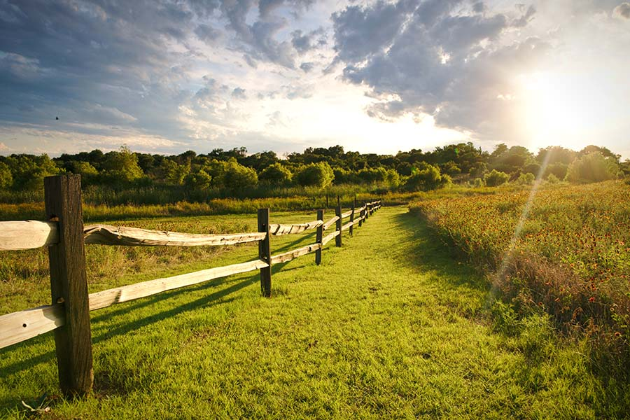 Contact - View of Green Grassy Fields with a Wooden Fence Running Through on the Texas Countryside at Sunset