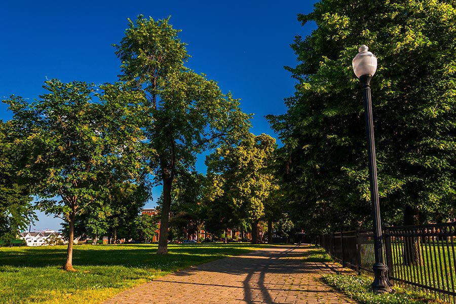 Hunt Valley, MD Insurance - Beautiful Paved Path in a Park With Leafy Trees and Iron Street Lamps on a Sunny Day