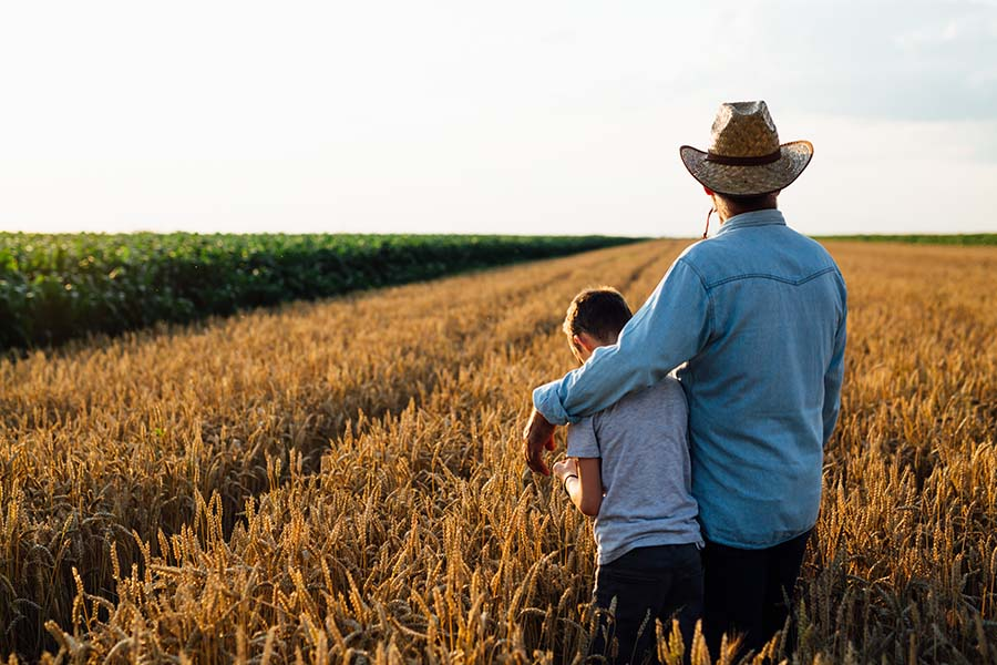 Contact - View of Father and Son Standing in a Field of Wheat Looking Out into the Distance at Their Farm