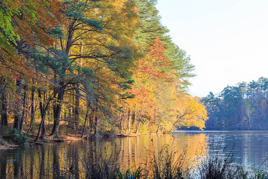 Insurance Quote - Landscape View of Lake and Trees in North Carolina