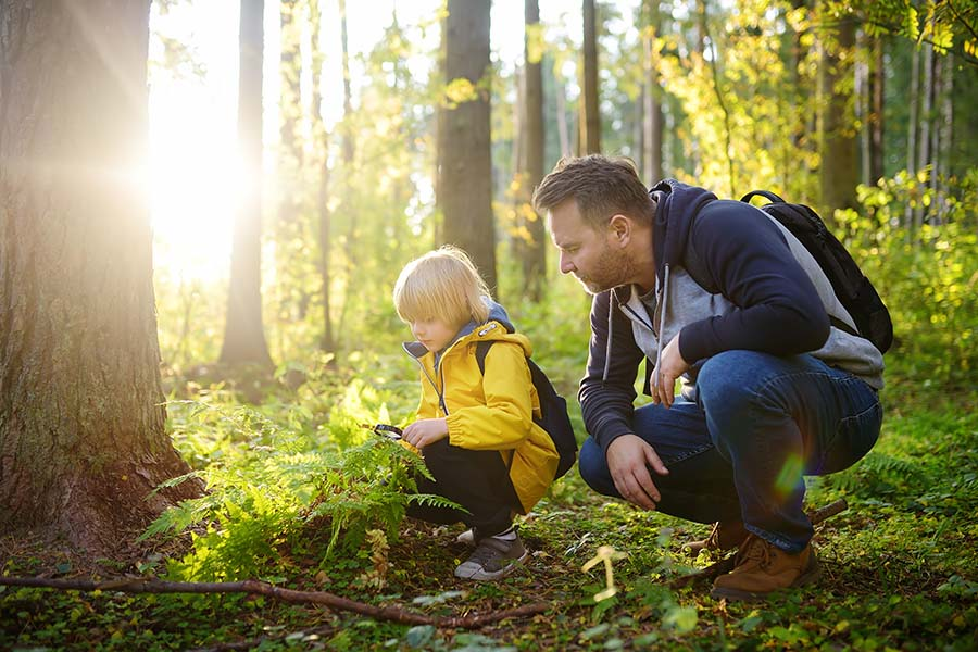 About Our Agency - Portrait of a Father and His Son Looking For Insects in the Woods During a Sunny Day