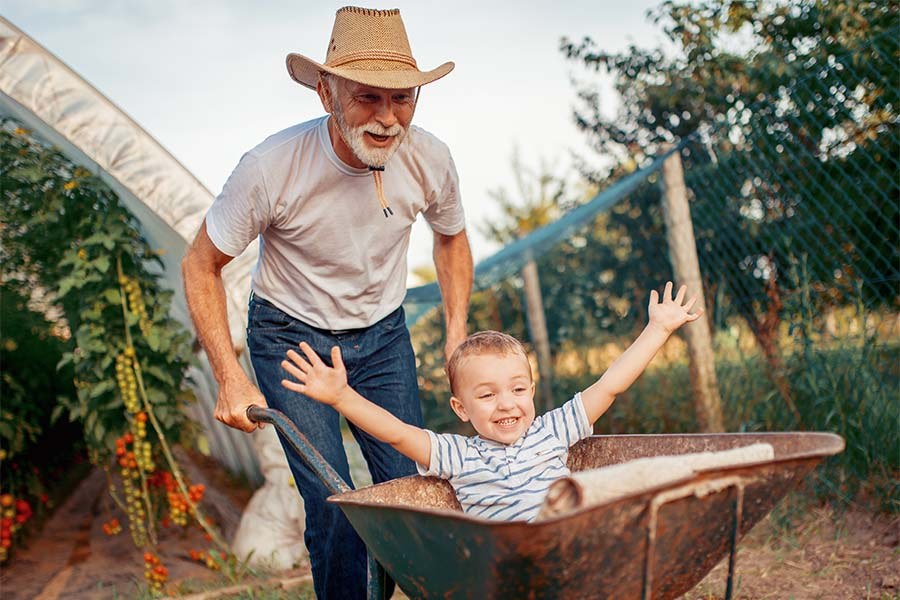 Employee Benefits - Portrait of a Cheerful Grandfather Playing with His Grandson in the Garden While Pushing Him in a Wheelbarrow