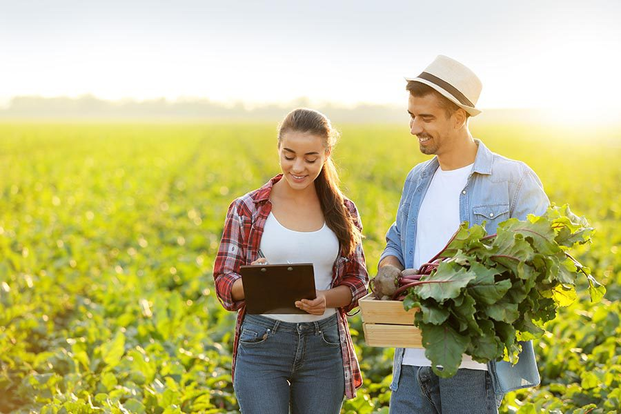 Business Insurance - Farm Owners Confer in a Field Holding Greens and a Tablet