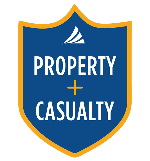 Shield Icon - Property and Casualty Insurance