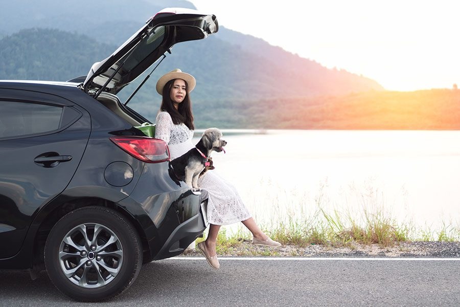 Personal Insurance - Happy Young Woman Traveler Sitting in the Hatchback of Her Car with Dogs at a Lake at Sunset