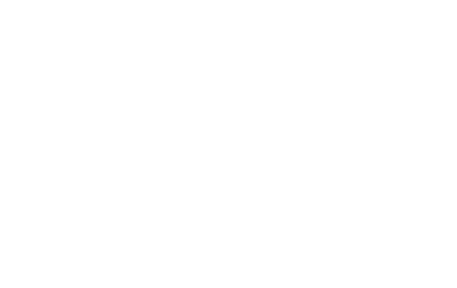 C. T. Lowndes & Company