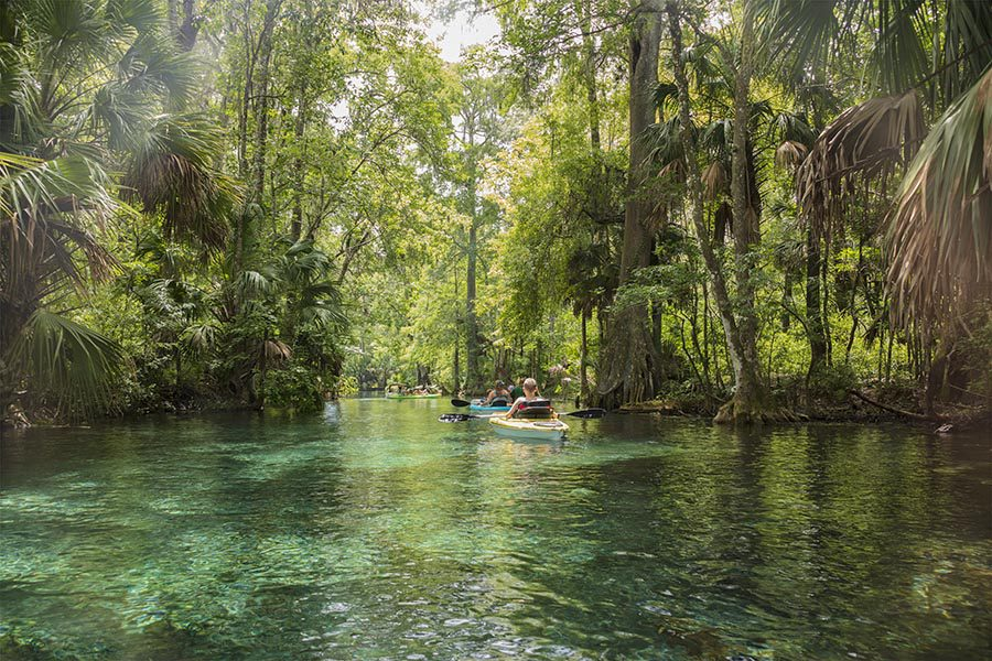 Ocala, FL Insurance - Kayakers Floating Through a Canal in Green Water, Tall Trees on either Side