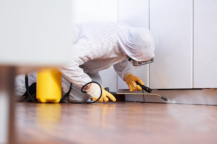 Pest Control Insurance - Pest Control Worker in the Kitchen of a Home Spraying Pesticide Under the Kitchen Cabinets