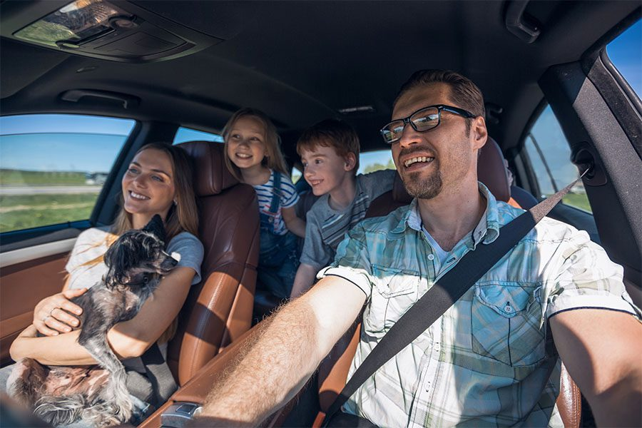 Insurance Quote - Portrait of a Cheerful Family with Two Kids and a Dog Sitting in the Car While on a Road Trip During the Summer