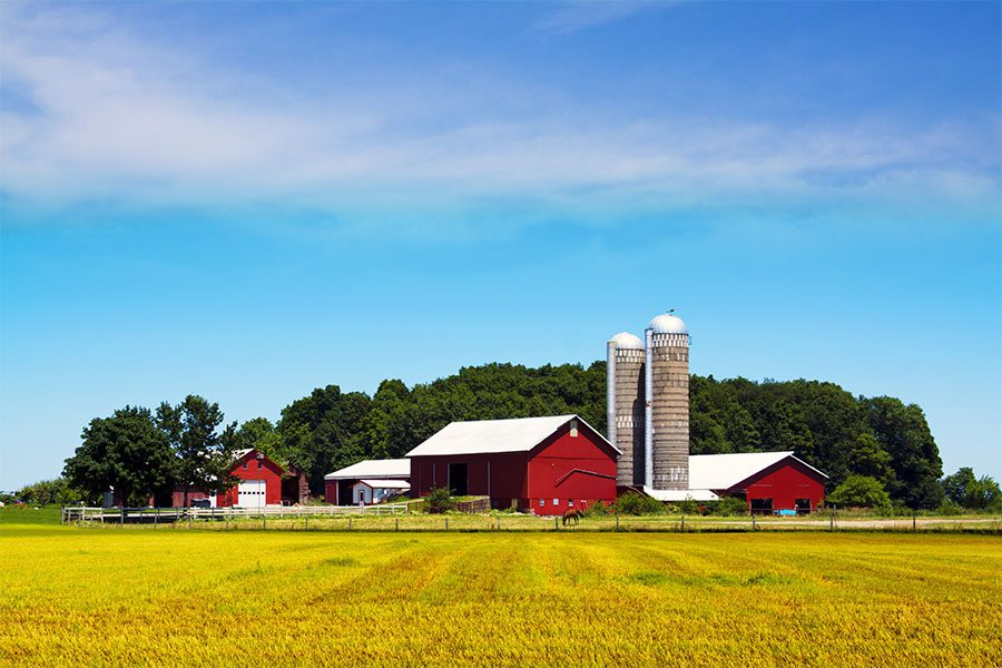 Specialized Business Insurance - View of Red Barn and Two Grain Silos Against a Bright Blue Sky on a Traditional Farm