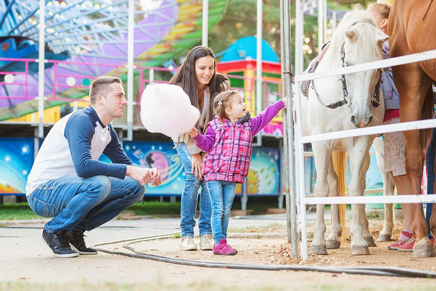 Personal Insurance - Family With Daughter Holding Cotton Candy and Stroking a Pony at an Amusement Park