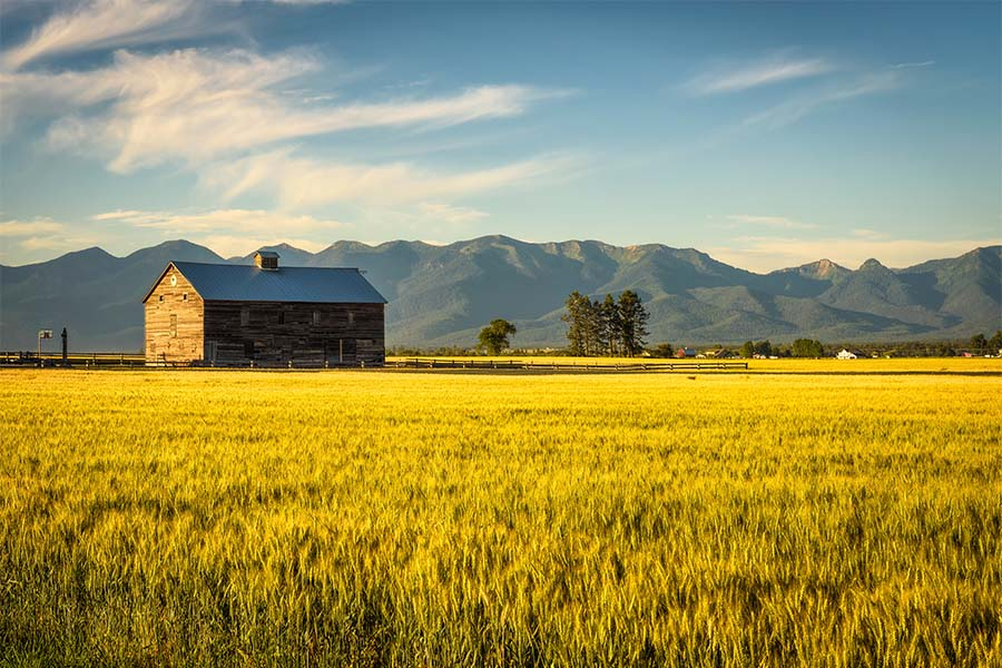 Contact - Scenic View of a Rustic Barn Surrounded by Green Grass with Views of the Mountains in the Background at Sunset