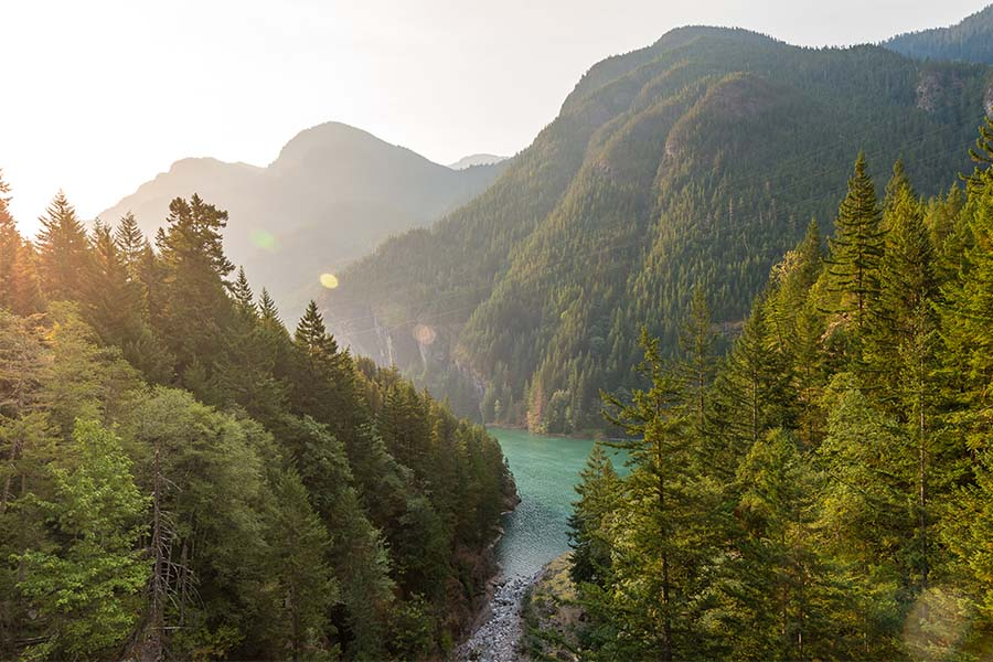 Contact - Scenic View of Green Trees and Mountains Surrounding a Clear River in Washington State at Sunset
