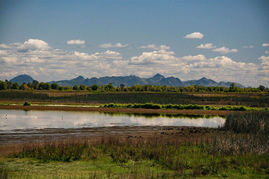 Chico CA - Scenic View of Sutter Buttes in Chico California with Views of a Lake Forests and Mountains