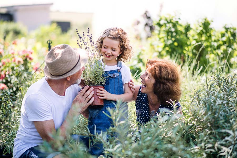 Employee Benefits - Portrait of Cheerful Grandparents Having Fun with Their Granddaughter in the Garden