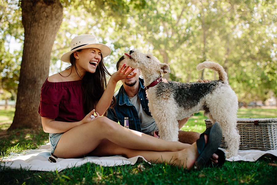 Personal Insurance - Portrait of a Young Couple Sitting on a Blanket in the Park Having Fun Playing with Their Dog