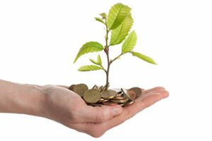 hand holding money and a sapling