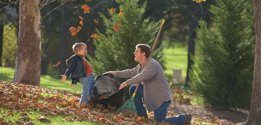 Man bagging leaves with child
