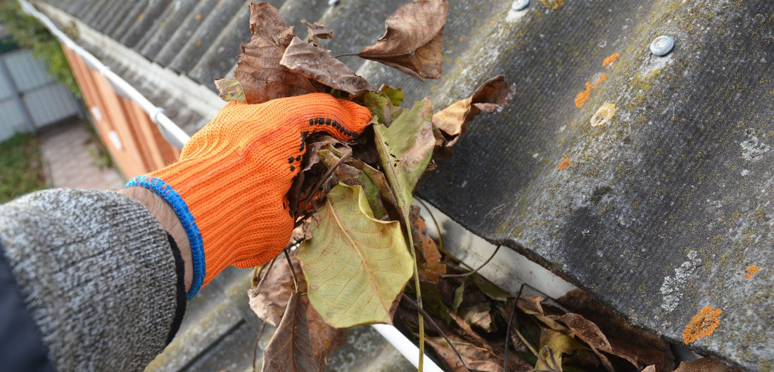pulling leaves from a gutter