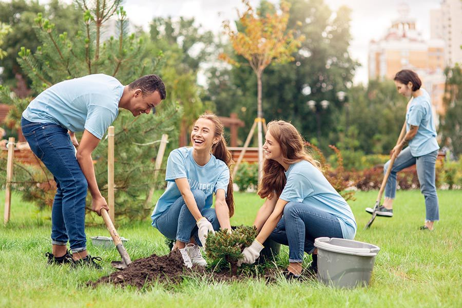Specialized Business Insurance - Non-Profit Staff Planting Trees, Wearing Volunteer Shirts